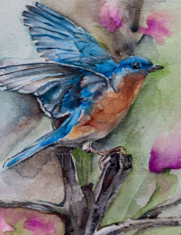 """""""Bluebird in the Peach Tree"""" watercolor by Shannon"""