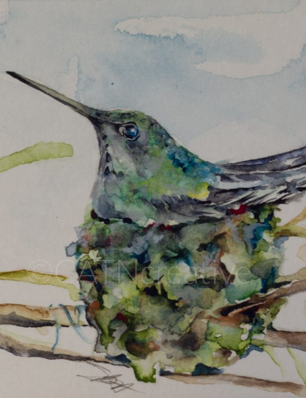 """""""Nesting"""" watercolor by Shannon"""